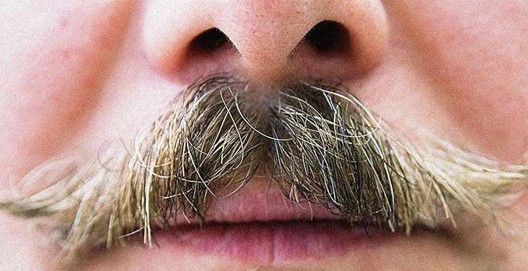 Mustache Transplants are Now a Thing!